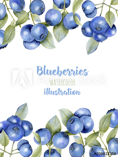 Blueberry clipart border. Card template with watercolor