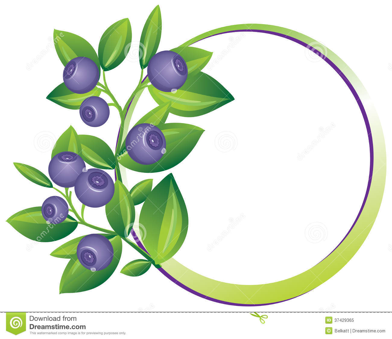 collection of blueberry. Blueberries clipart border