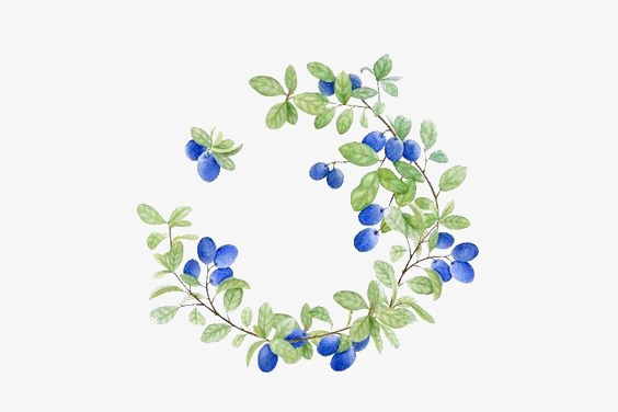 Flowers border leaves small. Blueberry clipart watercolor