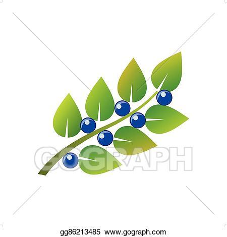 Clip art vector blueberry. Blueberries clipart branch