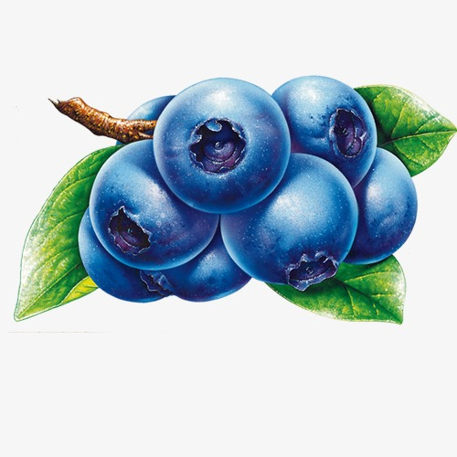 Blueberries clipart cartoon. Blueberry fruit png image
