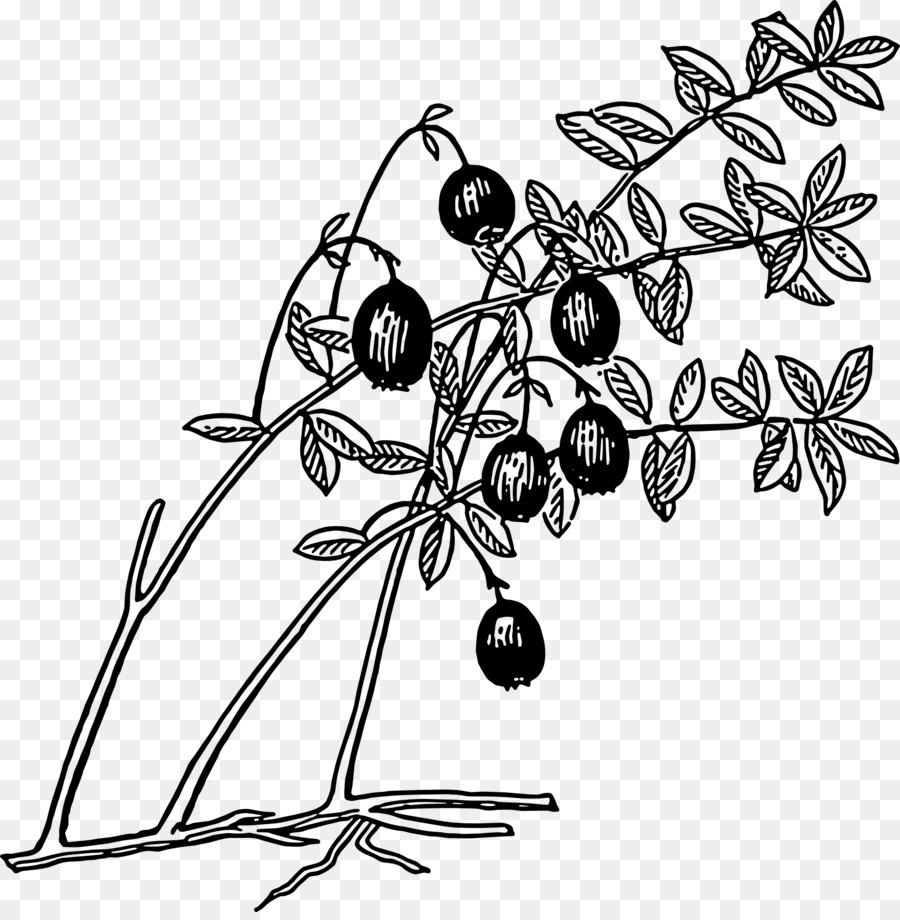 Juice sauce blueberry clip. Blueberries clipart cranberry