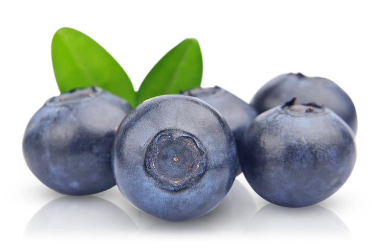 Png images free download. Blueberries clipart cranberry