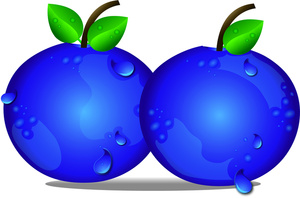 Blueberry clipart cute. Free blueberries cliparts download