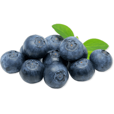 Blueberry clipart transparent background. Blueberries drawing png stickpng