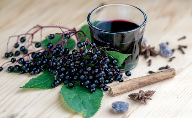 Natural medicine for colds. Blueberries clipart elderberry
