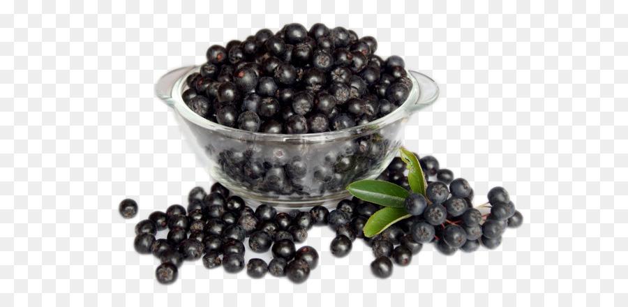 Aronia melanocarpa berry sorbus. Blueberries clipart elderberry