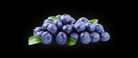Water kombucha buchi. Blueberries clipart elderberry