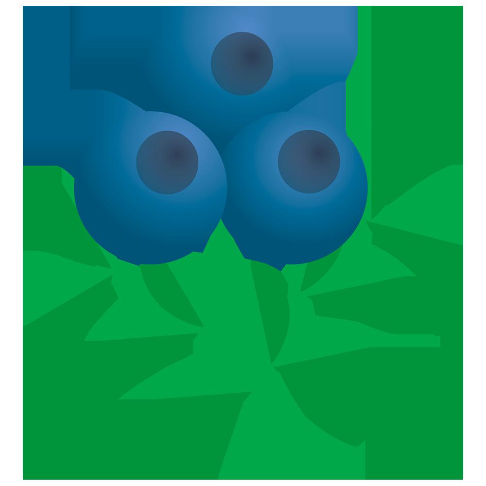 Blueberries clipart emoji. Superfood finland toolbox