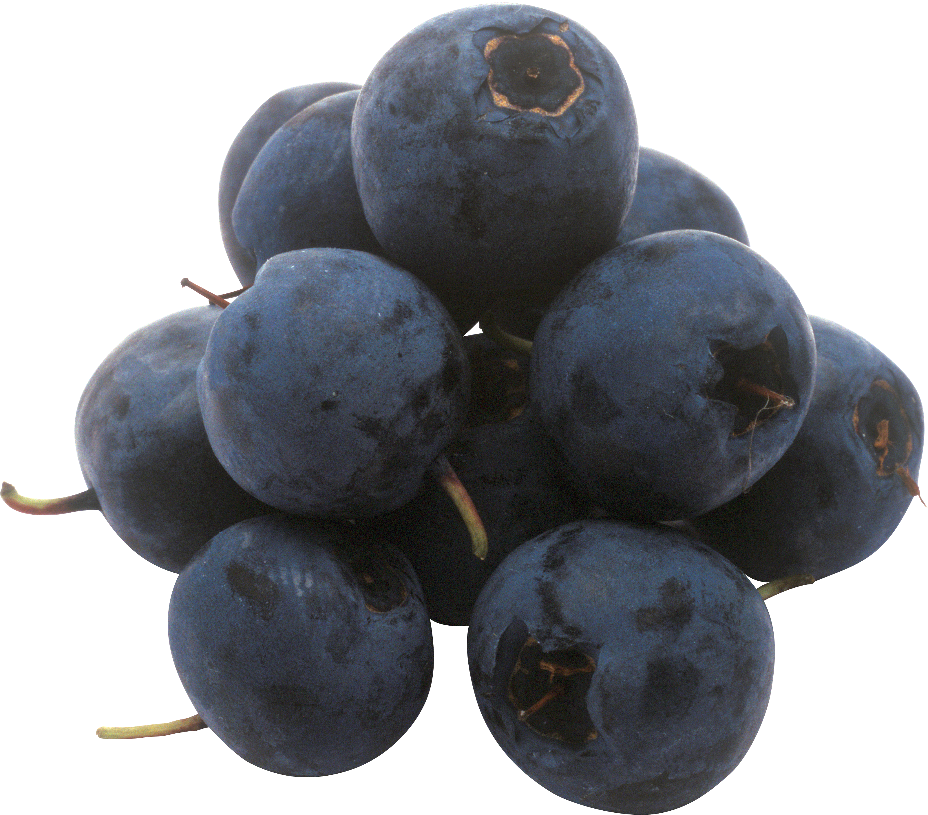 Png images free download. Blueberries clipart grape