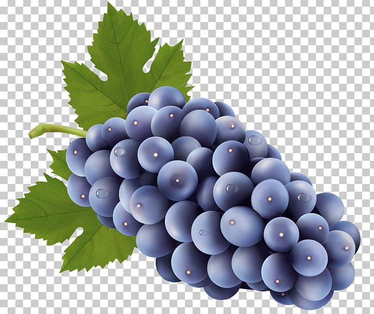 Blueberries clipart grape. Sultana png berry bilberry