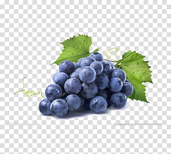 Blueberries clipart grape. Blueberry fruit white wine
