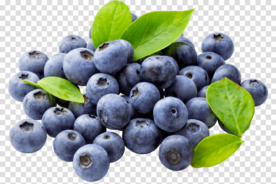 Blueberries clipart huckleberry. Pie cartoon blueberry fruit