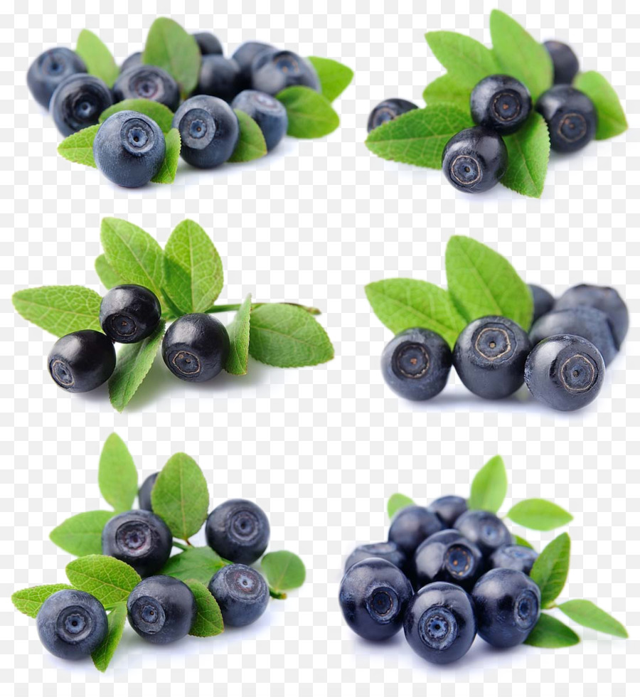 Blueberries clipart huckleberry. Blueberry fruit bilberry lingonberry