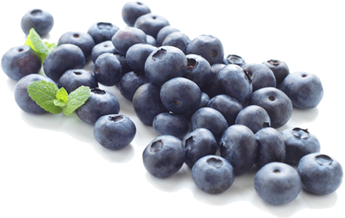 Png images transparent free. Blueberry clipart blueberry fruit