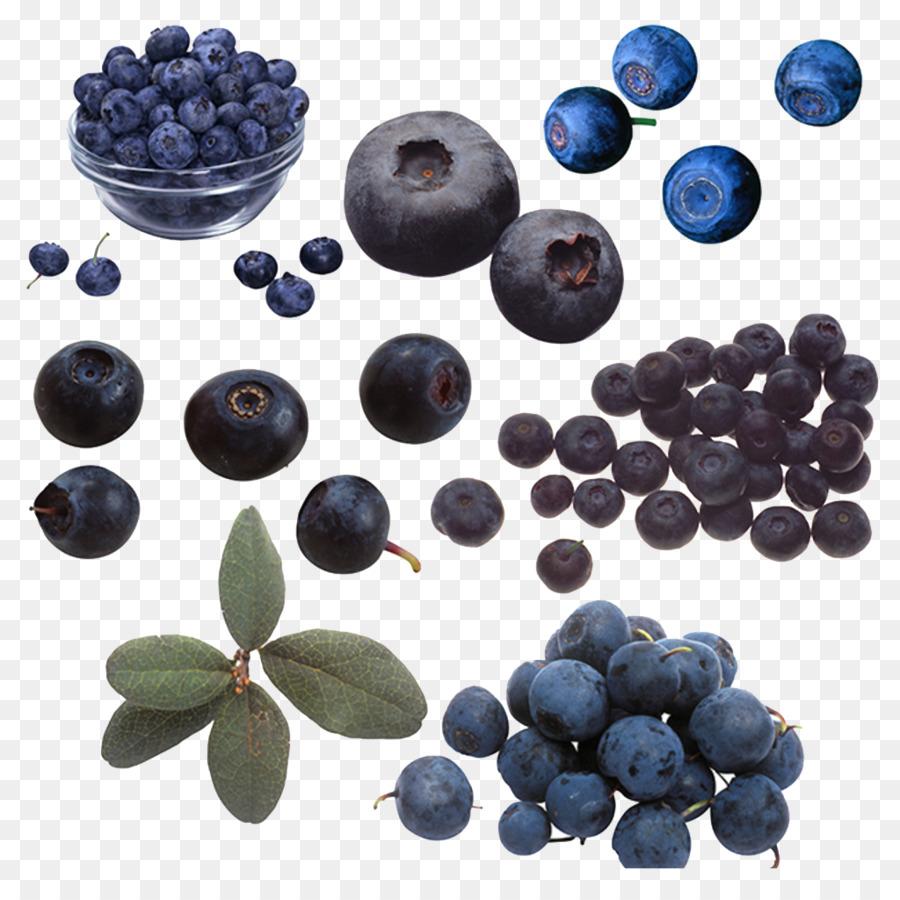 Blueberry clipart juniper berry. Beaujolais bilberry blue and