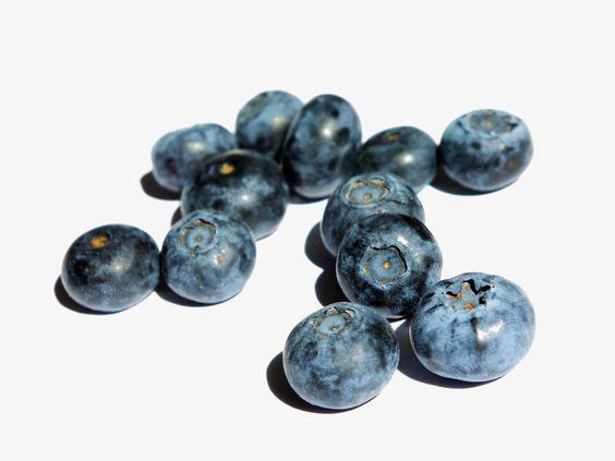 Blueberries clipart juniper berry. Fresh creative fruit blueberry