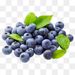 Muffin pie clip art. Blueberries clipart one blueberry