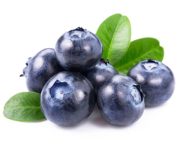 Blueberries clipart one blueberry. The rock star of
