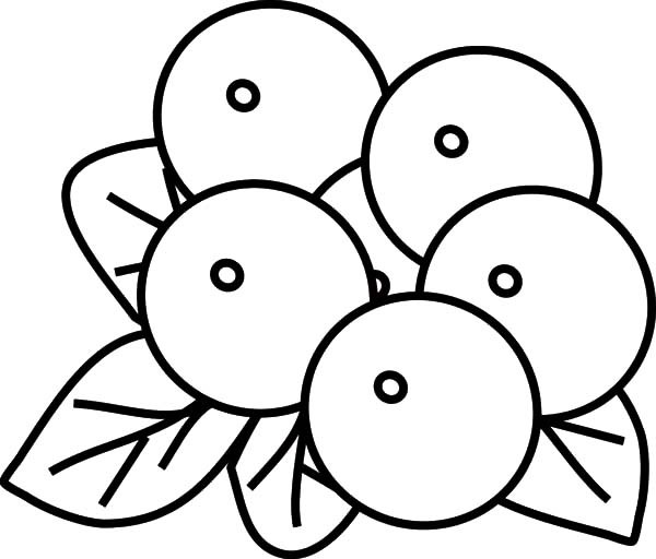 Blueberry clipart outline.  collection of fruit