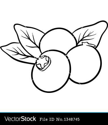 Black and white . Blueberry clipart outline