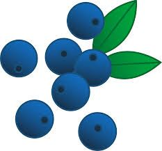 Blueberry clipart blue food.  best bl b