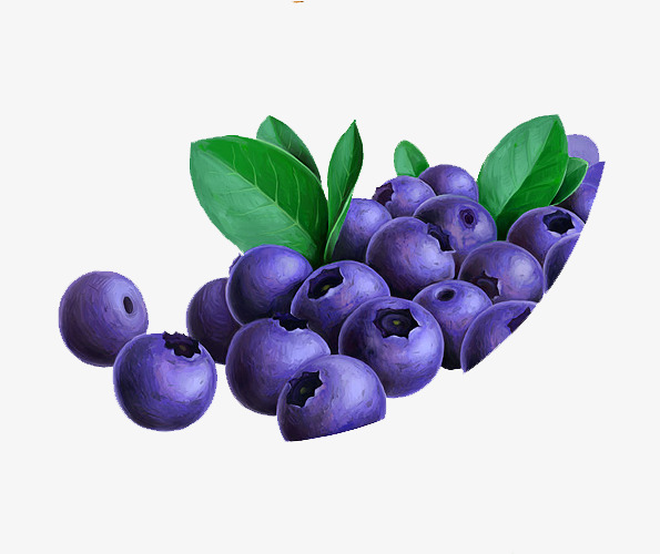 Purple piles blueberries png. Blueberry clipart pile