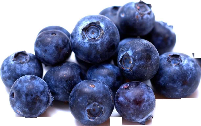 Blueberries png images free. Yogurt clipart blueberry yogurt