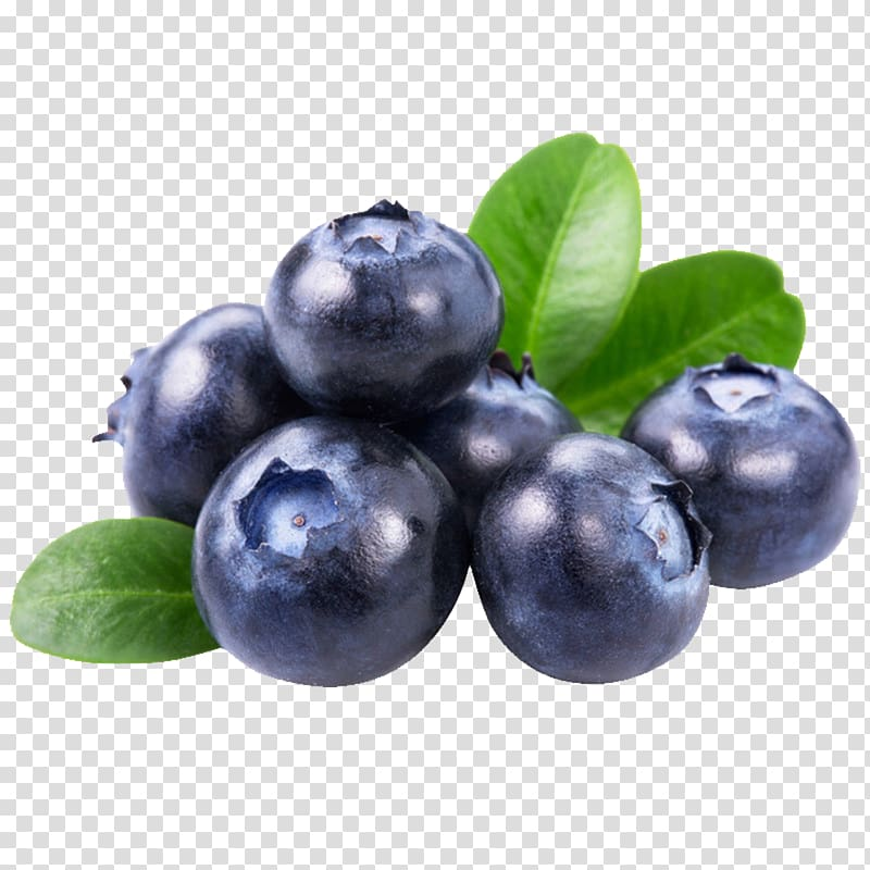 Bunch of blueberries juice. Blueberry clipart three