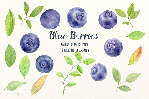 Blueberry clipart watercolor. Illustrations creative market