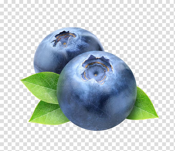 Blueberry transparent background png. Blueberries clipart single