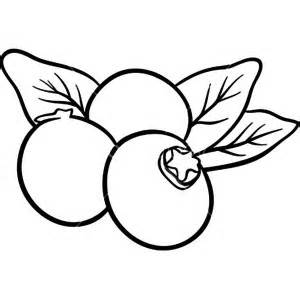 Blueberry black and white. Blueberries clipart sketch
