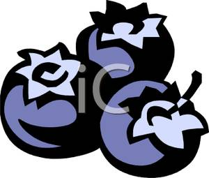 Picture . Blueberries clipart three