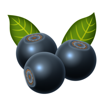 Blueberry png vector psd. Blueberries clipart three