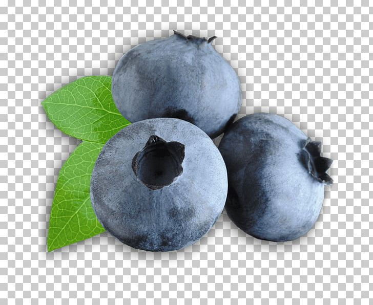 Zoom on png food. Blueberries clipart three