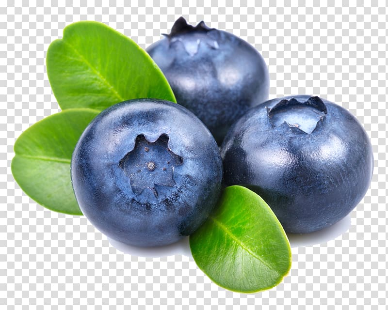 Blueberry clipart three. Blueberries illustration smoothie