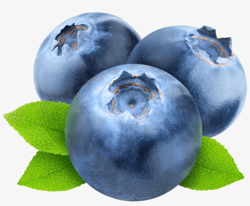 Blueberries clipart transparent background. Free png images