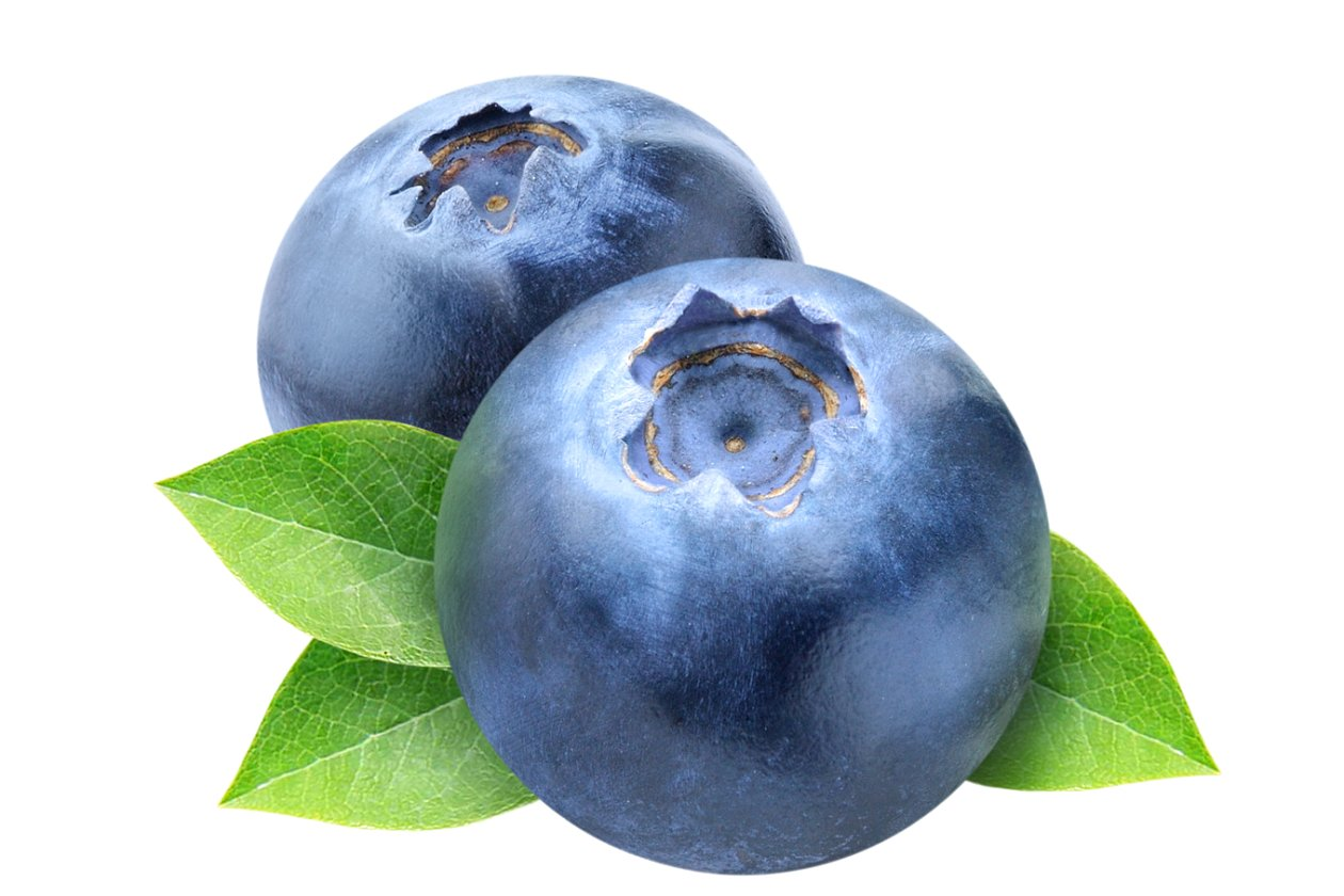 Three blueberries cut out. Blueberry clipart two