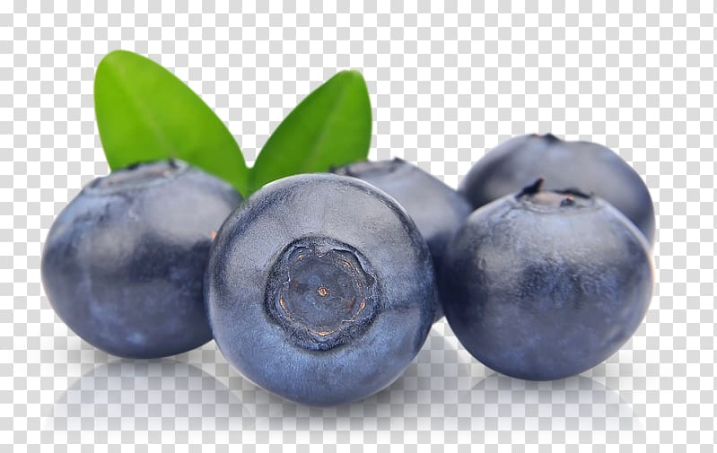Blueberries clipart two. Blueberry fruits pie fruit