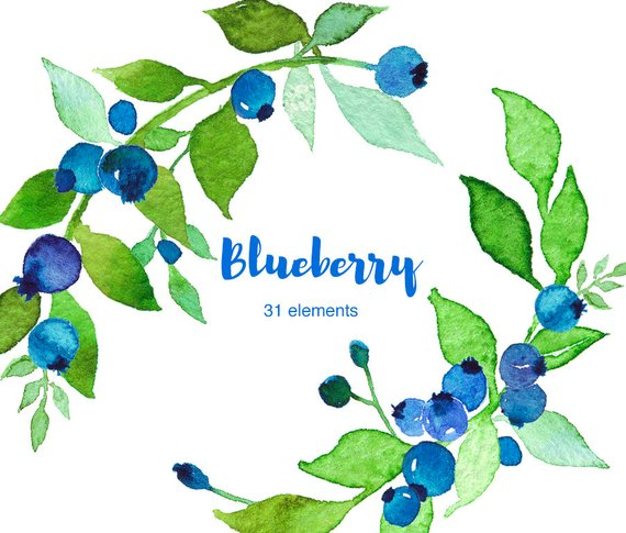 Set products in clip. Blueberry clipart watercolor