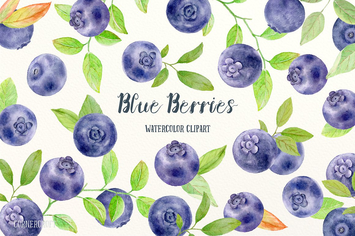 Illustrations creative market . Blueberry clipart watercolor