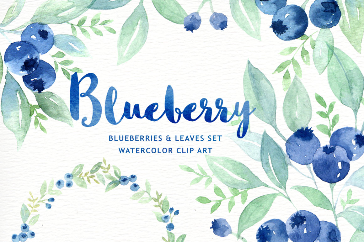 Blueberry wreath branch . Blueberries clipart watercolor
