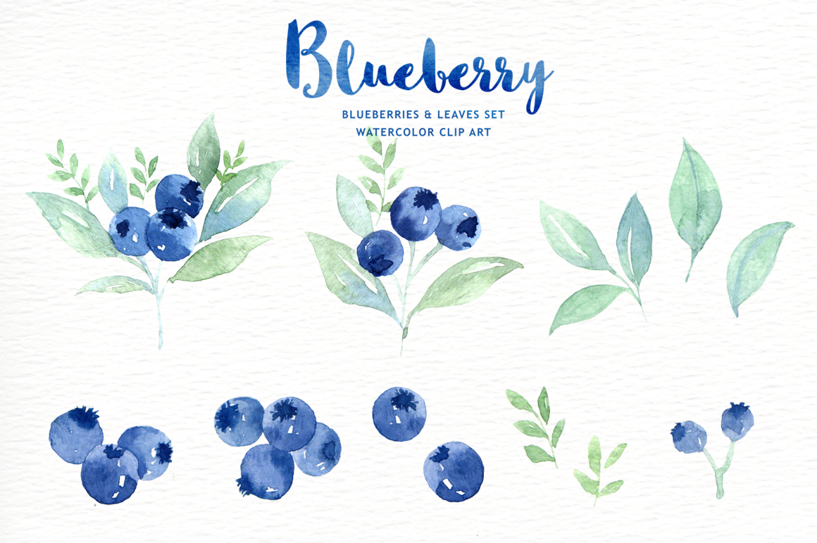 Blueberry clipart watercolor. By everysunsun on