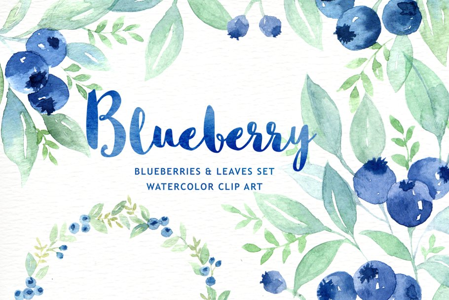 Blueberry clipart watercolor.