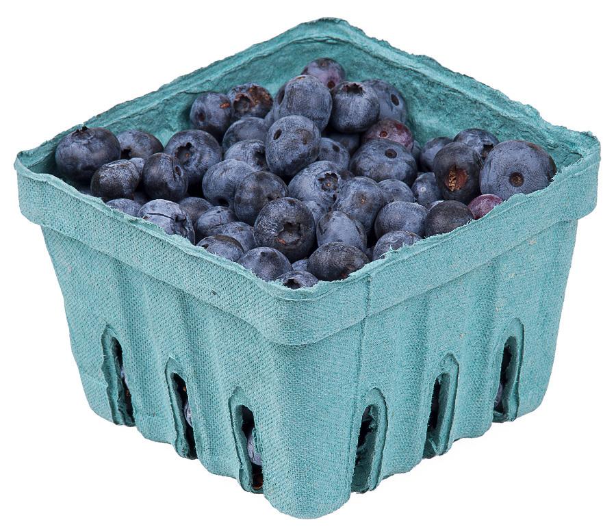 Blueberries in pack food. Berries clipart blue berry