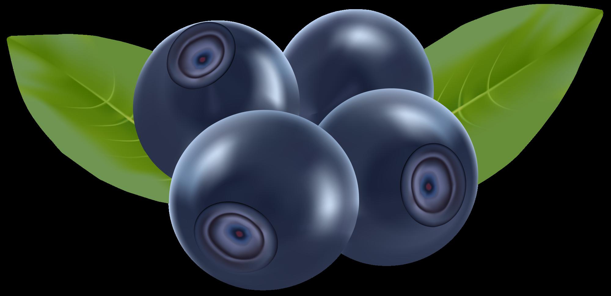 Blueberries png clip art. Wheel clipart blue