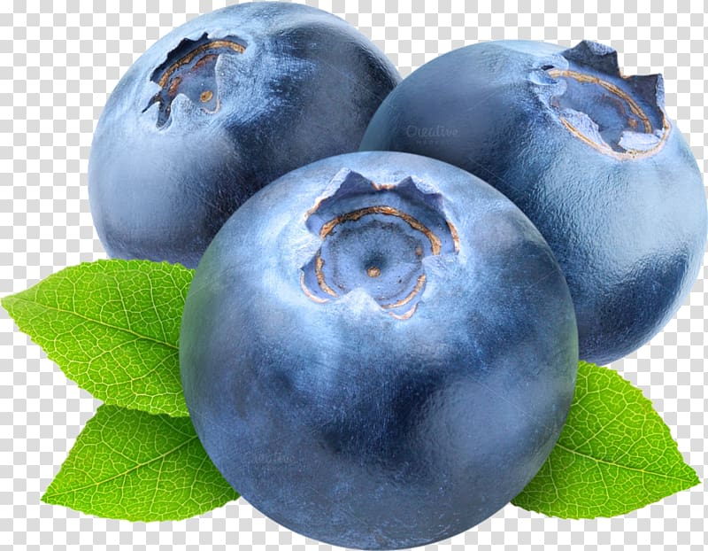 Blueberry clipart blue berry. Blueberries transparent background png