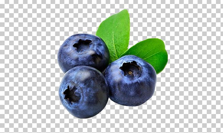 Muffin fruit png antioxidant. Blueberry clipart blue food