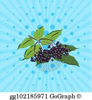 Blueberry clipart blue food. Vector art blueberries on