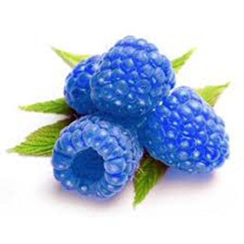 Blueberry clipart blue raspberry. Love juice ml house